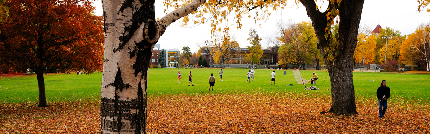 Ankeny field with students playing during the Fall